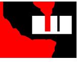 iusti.ro Logo